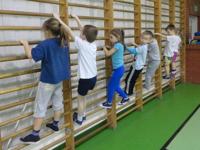 Oglądasz obraz z artykułu: Zdobyliśmy pierwszą sprawność gimnastyka!